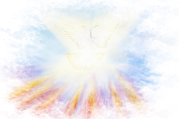 Holy Spirit Pentecost Or Confirmation Symbol With A Dove And B